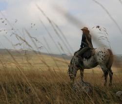 Séjour western Domaine de Puech Maynade - Rodez