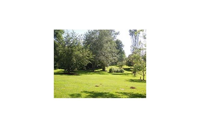 Parc  de loisirs de Vabre 1 - Onet-le-Château
