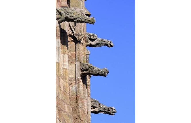 Cathédrale Notre-Dame de Rodez 4 - Rodez