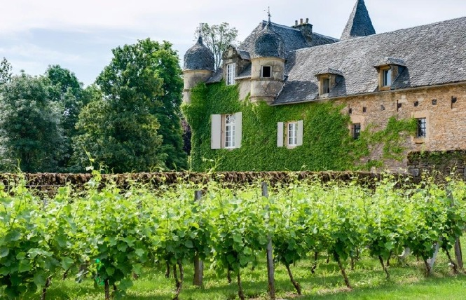 Le Château de Labro et sa Cabane Perchée- Fermé jusqu'au 30 décembre 5 - Onet-le-Château